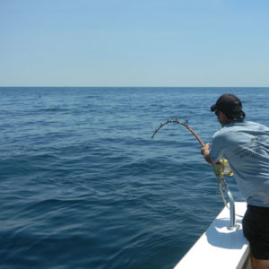 deep sea fishing off montauk
